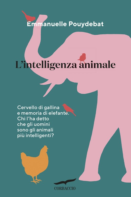 L'intelligenza animale